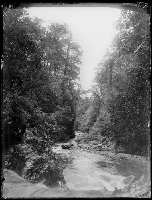 Glentui, Canterbury, looking down creek with trees on either side. The Press (Newspaper) :Negatives. Ref: 1/1-009860-G. Alexander Turnbull Library, Wellington, New Zealand. http://natlib.govt.nz/records/29942387