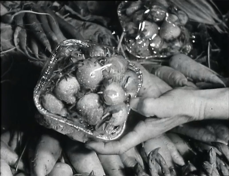 """The Uncertain Season"" (Shirley Maddock, 1962)"