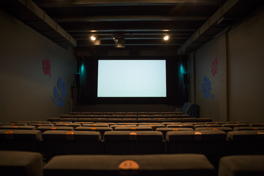 View from the back - the cinema at Ngā Taonga. Photo by Tabitha Arthur
