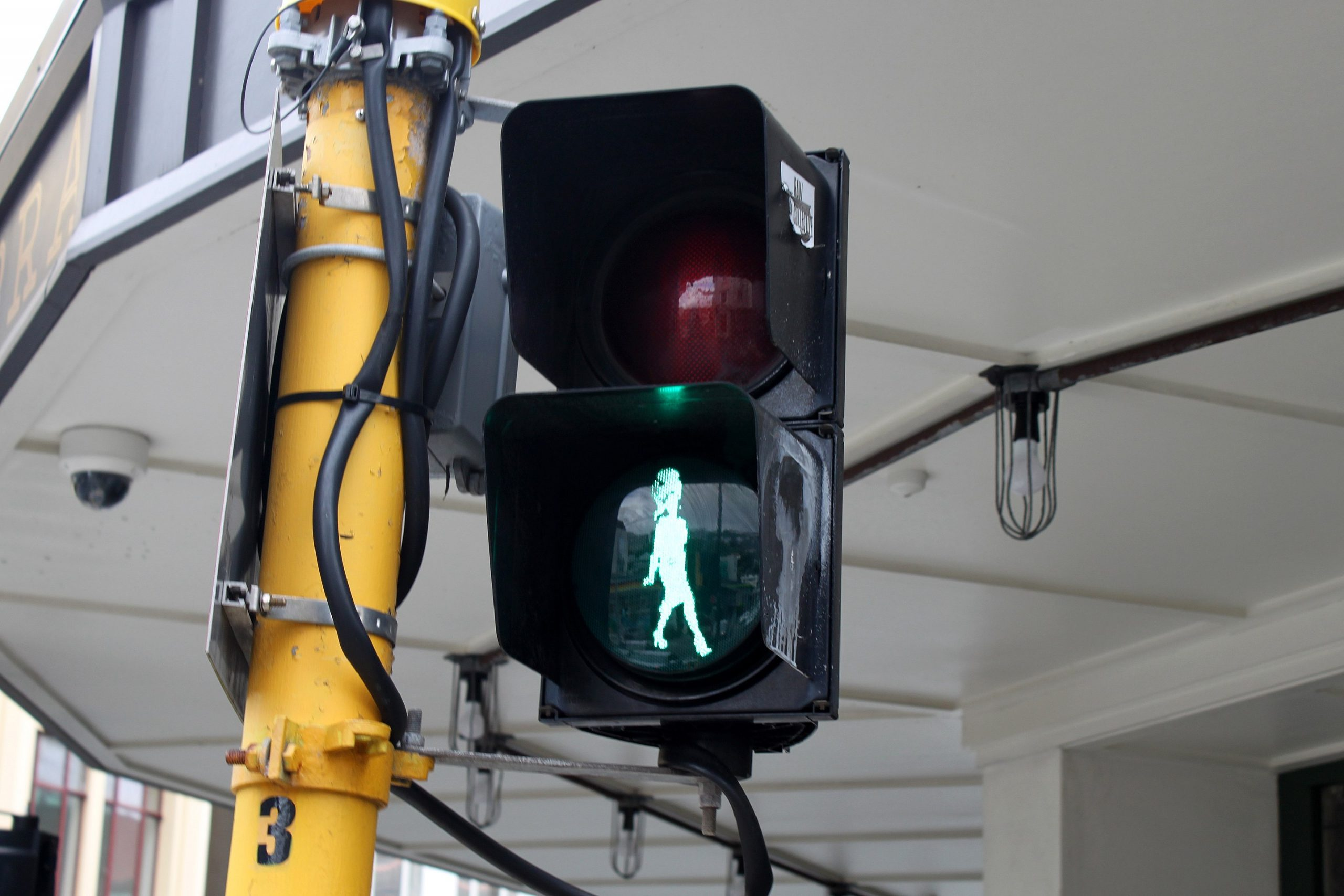 The Carmen Rupe pedestrian crossing light on the corner of Cuba and Vivian Streets, Wellington